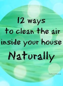 clean-air-3